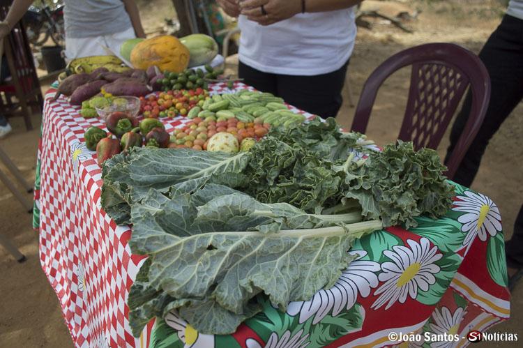 Legumes e frutas plantados e colhidos pelas próprias associadas, os quais foram usados na peça de teatro