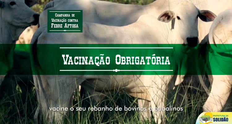 Campanha de vacinação contra febre aftosa em Solidão termina dia 30 de novembro