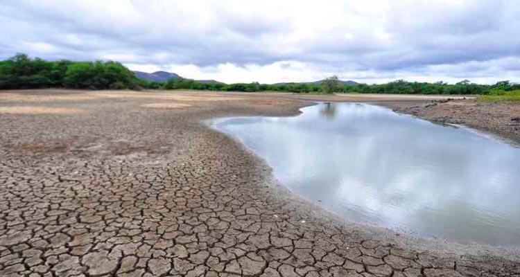 Toda região do nordeste ficara sem chuvas – Foto: Reprodução