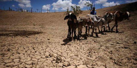 Nordeste mais seco nos próximos dias