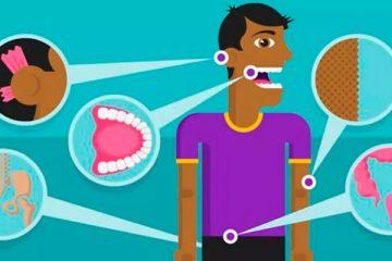 A evolução fez com que algumas partes do nosso corpo não sejam mais úteis- Foto: BBC