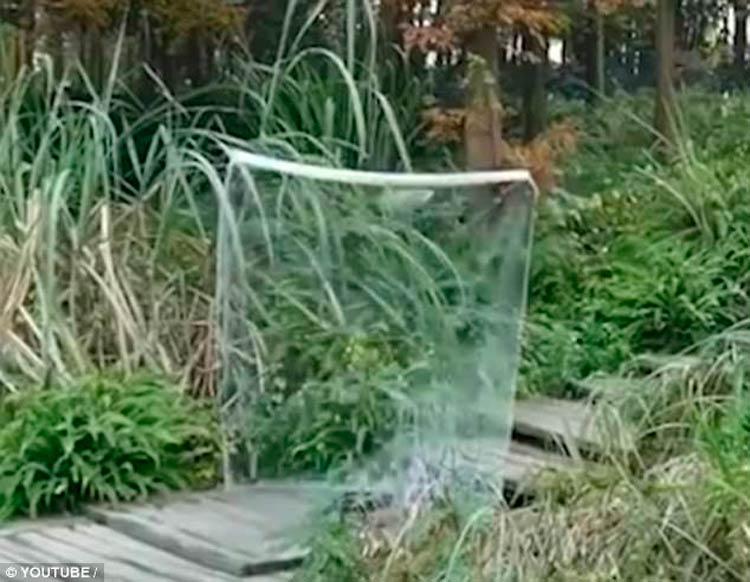 """""""Este é um tecido de tecnologia quântica feito de um material transparente"""" – Foto: Reprodução"""
