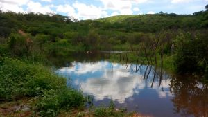O corpo foi encontrado no açude de Mano na zona rural de Solidão – Imagens cedidas por internauta via WhatsApp – Fotos: Reprodução/ S1 Notícias