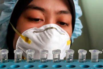 A N. gonorrhoeae infecta 80 milhões de pessoas por ano - Foto: OMS/G. Hampton