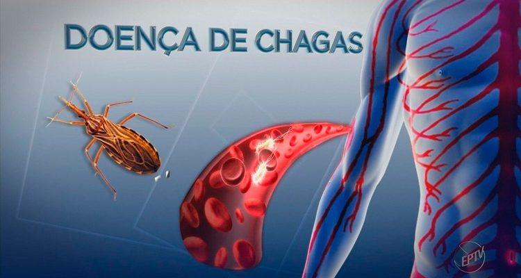 Surto de doença de Chagas é investigado no Sertão de PE