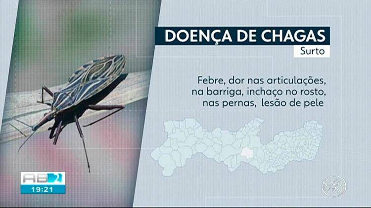 Surto de Doença de Chagas gera boatos e medo na população do Sertão