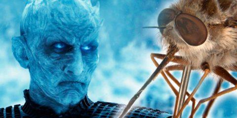 Nova espécie de mosca é batizada com o nome de vilão de 'Game of Thrones'