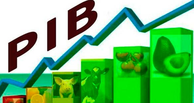 PIB de Pernambuco cresce 1,2% no primeiro trimestre