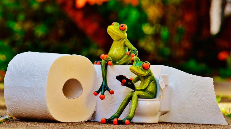 Cocô dia sim, dia não? O que é mais saudável na hora de ir ao banheiro?