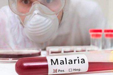 Anvisa aprova nova droga para malária