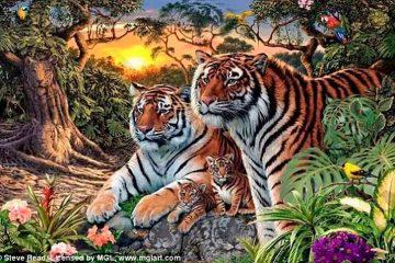 Desafio: quantos tigres você enxerga nesta imagem?