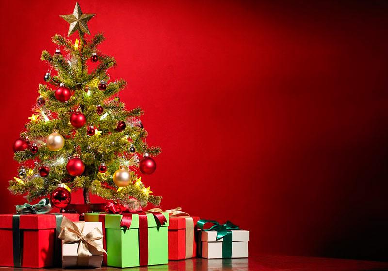 Existe um dia correto para montar a árvore de natal?
