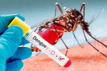 Dengue: 2019 Brasil tem segundo maior número de casos de série histórica