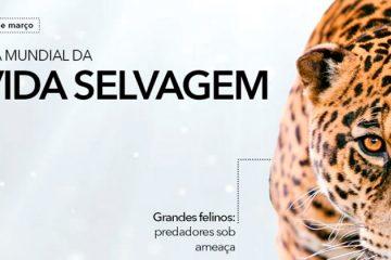 3 de março - Dia Internacional da Vida Selvagem