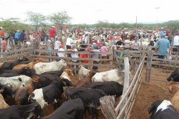 MP e prefeitura suspendem feira livre de Tabira como prevenção ao Coronavírus