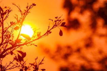 Brasil enfrentará nova onda de calor esta semana