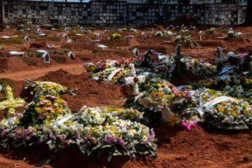 Covid-19: Brasil tem 713 óbitos e 28.523 novos casos em 24h